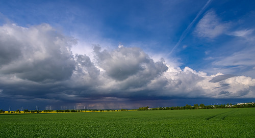 the weather front / helmuthess